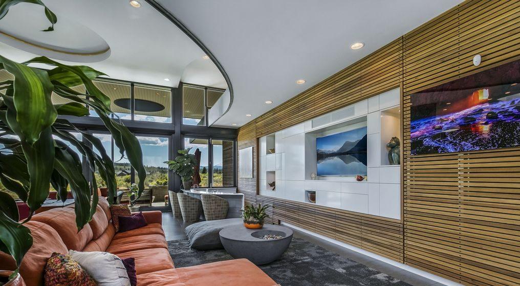 modern living room organic